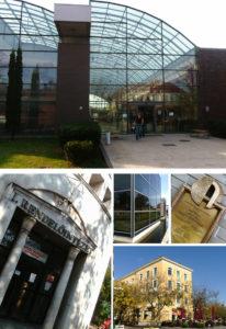 Dunaújváros weboldal készítés